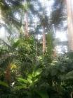 United States Botanical Gardens