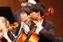 Cello and Bass Section